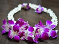 Ожерелье из орхидей