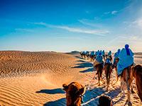 Туры из Ташкента в Тунис