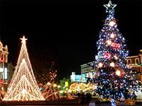 Новый год в Варне