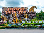 Тигриный зоопарк