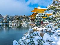 Зимний тур в Токио
